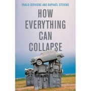 Book cover of How Everything Can Collapse