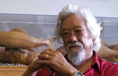 David Suzuki video